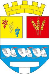 01 Grad Vinkovci